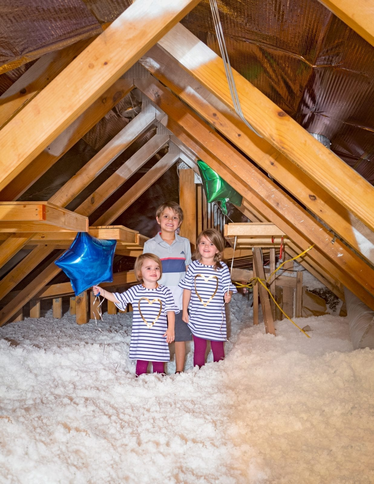 20 Reasons To Pay More Attention To Your Attic  Energy Attic